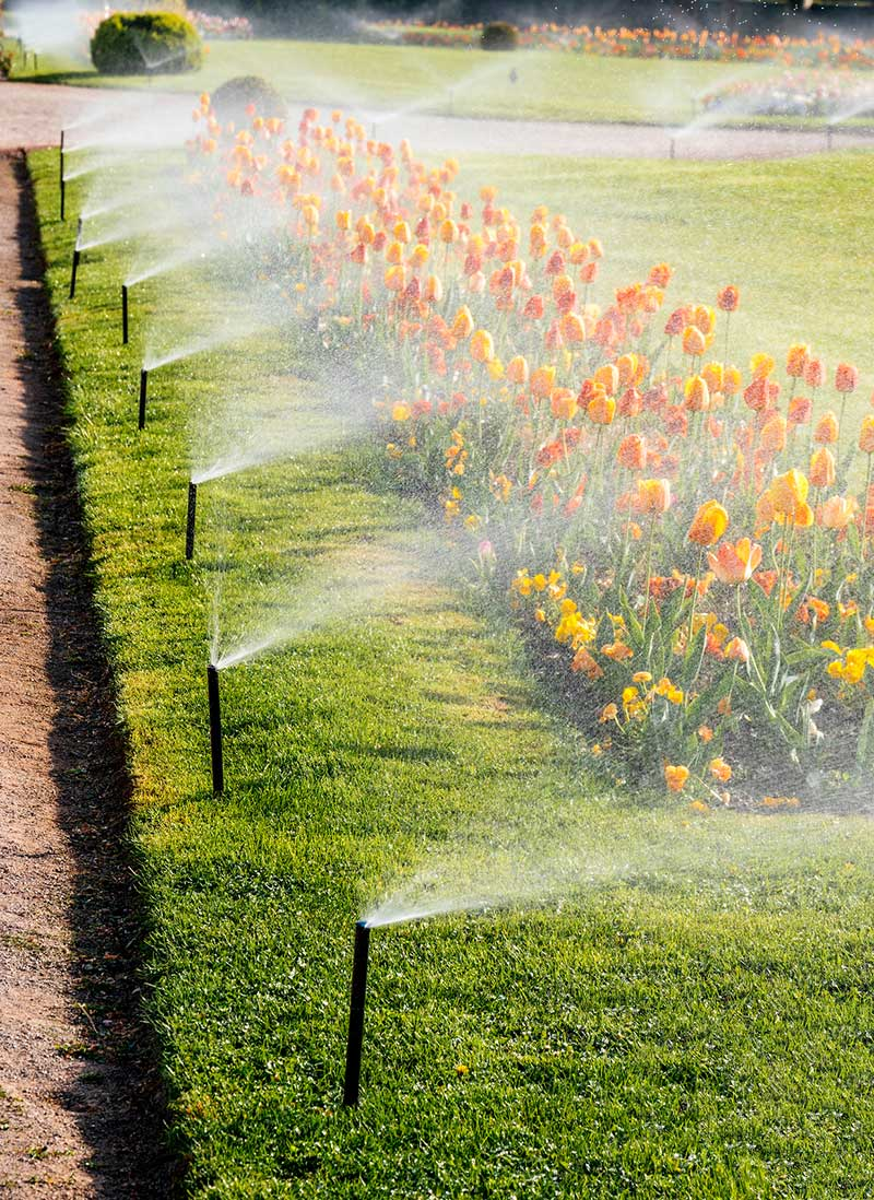 Repairing sprinkler systems is a process of troubleshooting a failing component.